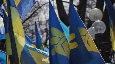To fight corruption in Ukraine — Stock Video