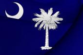 Bandera de carolina del sur, estados unidos. — Foto de Stock