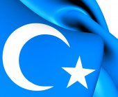 Flag of East Turkestan — Stock Photo