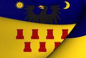 Flag of Transylvania — Stock Photo
