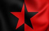 Flag of EZLN  — Stock Photo