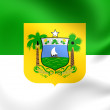 Rio Grande do Norte Flag, Brazil. — Stock Photo #58310303