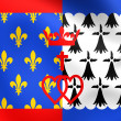 Flag of Pays de la Loire, France. — Stock Photo #60610759