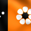 Flag of Northern Territory, Australia. — Stock Photo #60610811