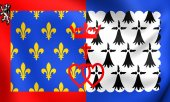 Flag of Pays de la Loire, France.  — Stock Photo