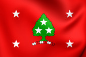 Standard of the Governor of Tennesse, USA.  — Stock Photo