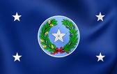 Governor of Texas Standard, USA.  — Stock Photo