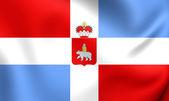 Flag of Perm Krai, Russia.  — Stock Photo
