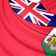 Flag of the Bermuda — Stock Photo #74216271