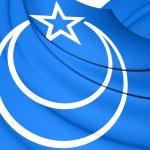 Flag of Second East Turkestan Republic — Stock Photo #74216847