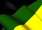 Flag of African National Congress — Stock Photo