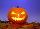 Halloween pumpkin on leaves — Stock Photo