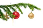 Christmas toys on fir twig over white — Foto Stock