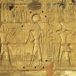 Hieroglyphic carvings in ancient egyptian temple — Stock Photo #64541491