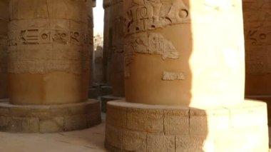 Columns in karnak temple — Video Stock