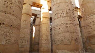 Columns in karnak temple — Stock Video