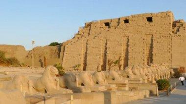 Ancient temple in Luxor — Стоковое видео
