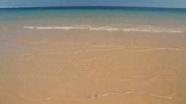 Sea on gold sand beach — Stock Video