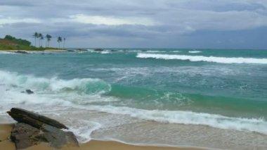 Stormy sea beach — ストックビデオ