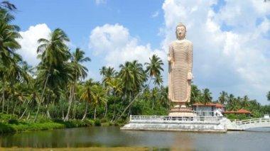 Peraliya Buddha Statue — Stock Video