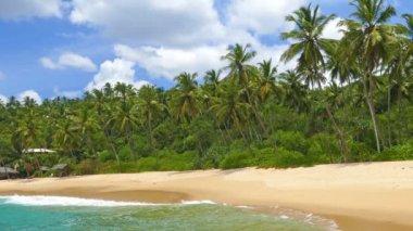 Sea waves on tropical beach — Stock Video