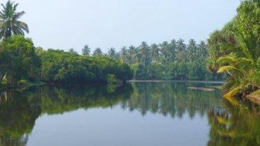 Tropical lake in Sri Lanka — Stock Video
