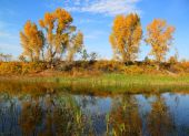 Beautiful autumn lake landscape — Stock Photo