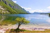 Picturesque view of Lake Bohinj, Slovenia — Stock Photo