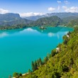 Panoramic view of Bled Lake, Slovenia — Stock Photo #64167275