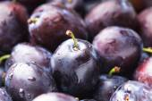 Fleshy plums — Stock Photo