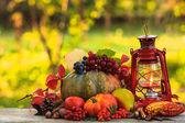 Cozy autumn — Stock Photo