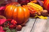 Autumn in a box — Foto Stock
