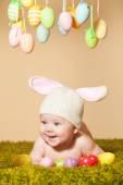 Baby Easter bunny — Stock Photo