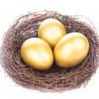 Golden eggs in nest — Stock Photo #68322691