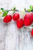 Red eggs — Stockfoto