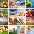 Summer time — Stock Photo #78028178