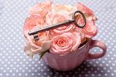 Rosas y vieja llave — Foto de Stock