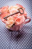 Old key and roses — Stock Photo