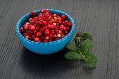 Fresh Cowberry — Stock Photo