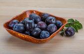 Fresh plums — Stock Photo