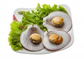 Grilled scallops — Stock Photo