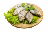 Peixe carpa — Foto Stock
