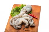 Raw octopus — Stock Photo