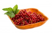Red currant — Stock Photo