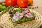 Salami — Stockfoto