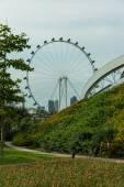View of Singapore city skyline — Stock Photo