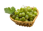 Green Gooseberries — Stock Photo