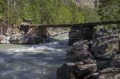 Old dilapidated bridge on the mountain river — 图库照片