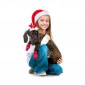 Girl in Santa Claus hat with a dachshund — Stock Photo