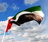 United Arab Emirates flag — Stock Photo